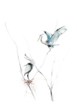 heron's nest