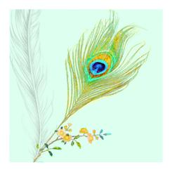 Peacock Feather Sprig