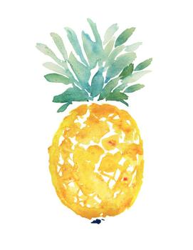 ananas - for minted and west elm