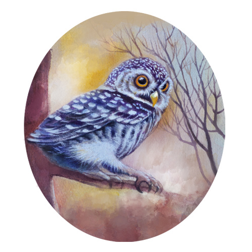 art prints - The Wise Owl by Kristen Panlilio