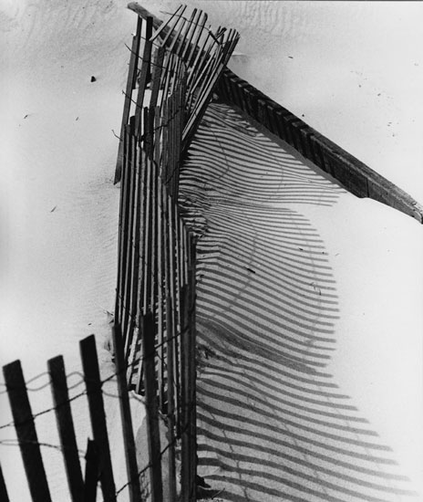 art prints - Storm Fence by Judith Moderacki