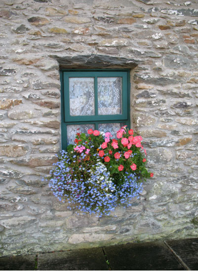 art prints - French Window Box by Richard Coble