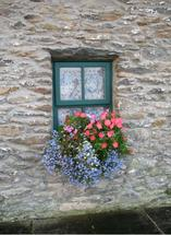 French Window Box by Richard Coble