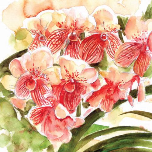 art prints - Bloomin' lovely by Kristen Panlilio