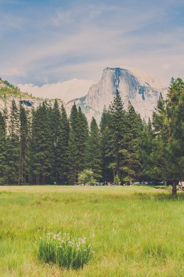 art prints - Summer in Yosemite by Bente Jorgensen-Barajas