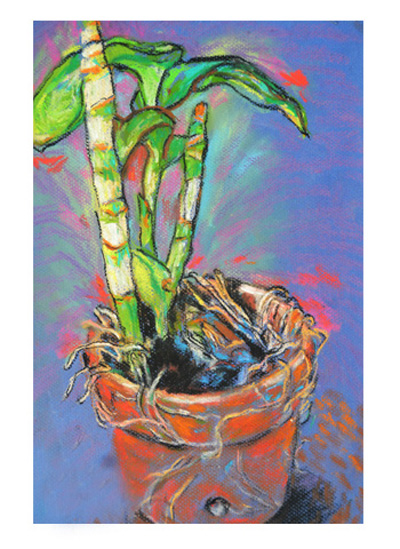 art prints - Beauty in a Pot by Kristen Panlilio
