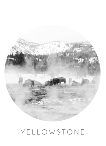 art prints - Frozen Yellowstone by Sherei Co.