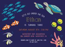 Under the Sea Adventure by Rosewater Designs