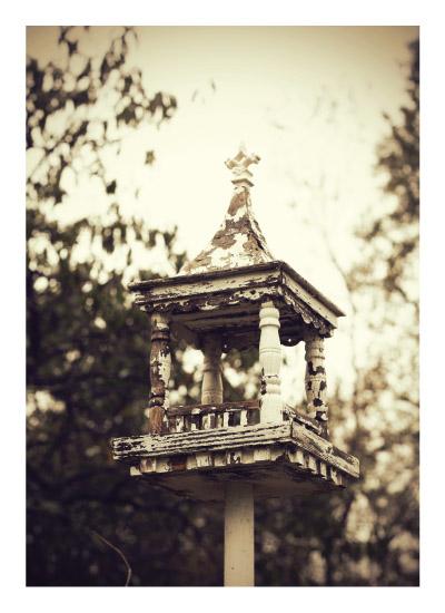 art prints - Antique Birdhouse by Gray Star Design