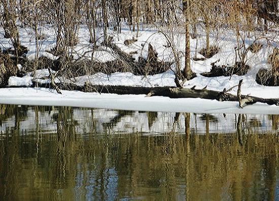 art prints - River Landscape by Up The Creek Press