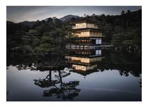 The Golden Pavilion by Canary Collections