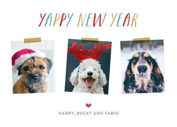Yappy New Year 2
