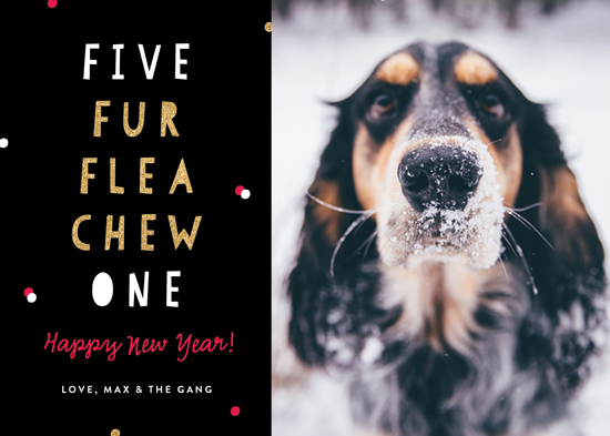 new year's cards - Canine Countdown by Erica Krystek