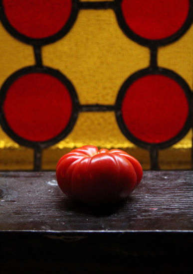 art prints - The lone tomato by Lauren Ehle