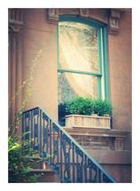 Carroll Street by Alayne Richardson