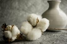 Cotton And Gray by Tanya Joiner Slate