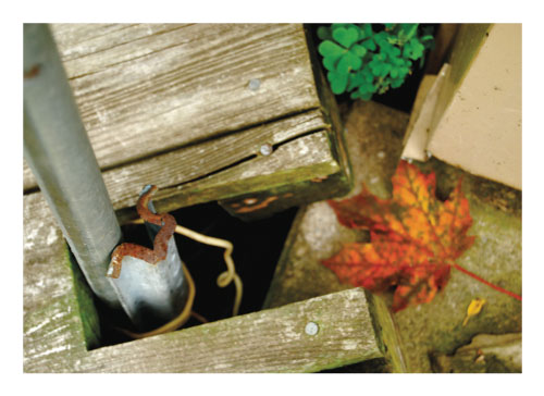 art prints - Rusted Spout by Amelia Lepak