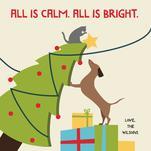 Christmas Chaos by Rebecca Casselman