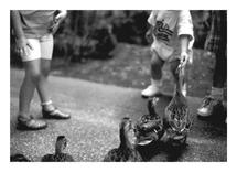 Kids and Ducks by Super Unison