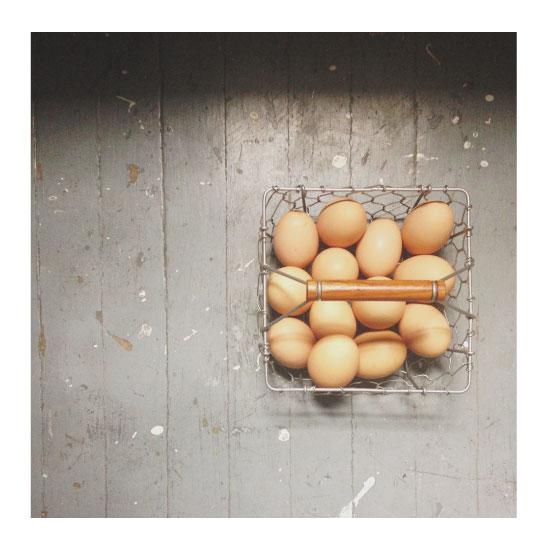 art prints - Eggs in a Basket by Adrienne Bley