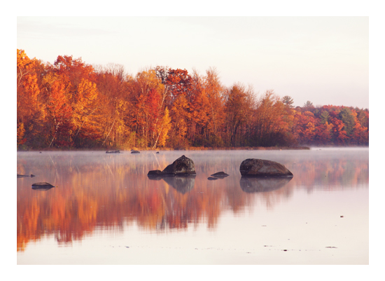 art prints - Lake Reflections by Images of Light