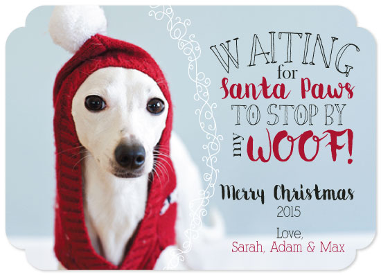 holiday photo cards - Waiting for Santa Paws by Ilidia Nicholas
