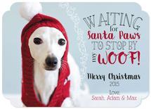 Waiting for Santa Paws by Ilidia Nicholas