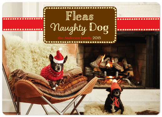 holiday photo cards - Feliz Naughty Dog by Jane Snider