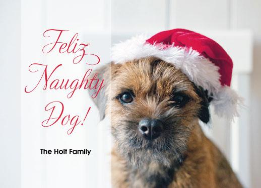 holiday photo cards - Feliz Naughty Dog Holiday Card by Kristin Modjeska-Holt