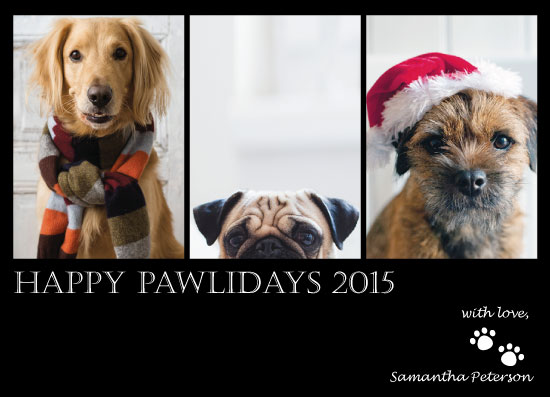 holiday photo cards - Happy Pawlidays by CL