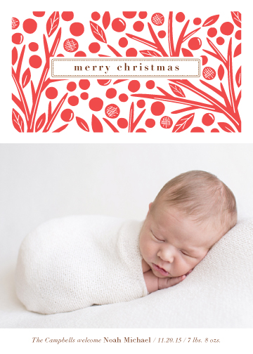 holiday photo cards - Berry and Branch by Griffinbell Paper Co.