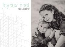Joyeux Noel Snowflake by Julie Darrell