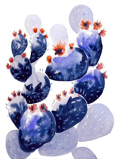 art prints - Cacti and flowers by Miren