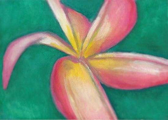 art prints - Summer Bloom by Kati Smeaton