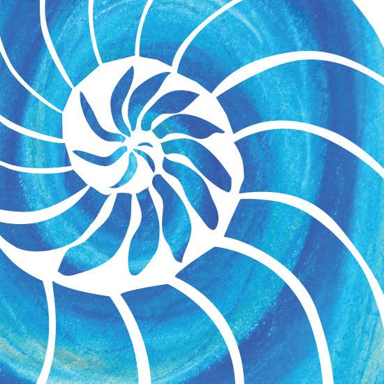 art prints - Nautilus Bliss by Jill