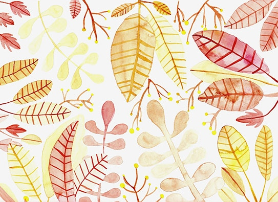 art prints - Autumn Treetops by Katie Han