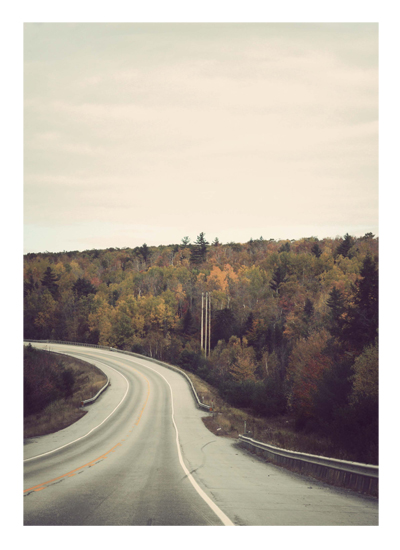 art prints - The Road Home by Gray Star Design