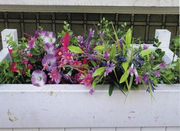 Spring Blooms of Soho 2