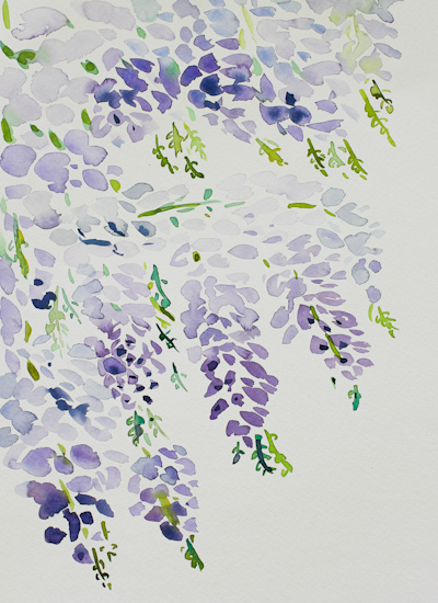 art prints - Wisteria in Tuscany by Gina Langford