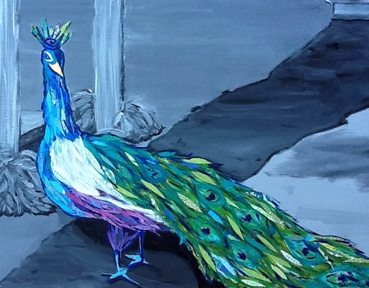 art prints - Proud Peacock by Susannah Raine-Haddad
