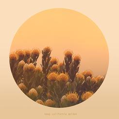 Keep California Golden- Big Sur Flowers