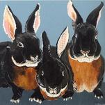 Black Velvet Bunnies by Susannah Raine-Haddad