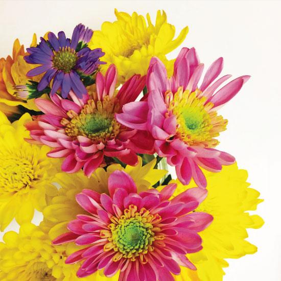 art prints - Bright Flowers by Bri Santacaterina