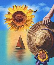 Sunflower Sunrise by John Sposato