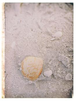 Beachcomber I