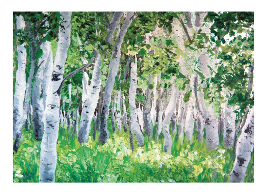 art prints - Aspen Forest by Larkspur and Laurel