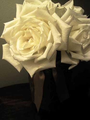 art prints - White Roses in Golden Vase by Juliet Sender