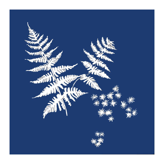 art prints - Fern and Star moss indigo by Suzie Gilmour