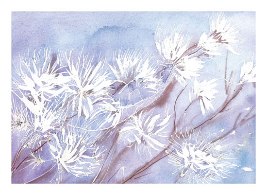art prints - Winter Flowers by Matilda