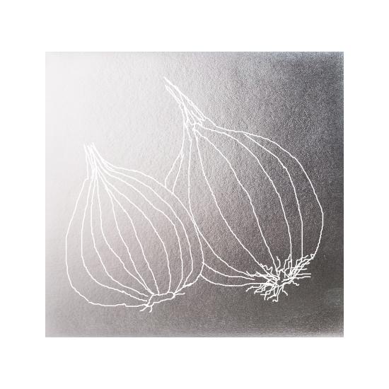 art prints - Silver veggies-Onion by Avinash